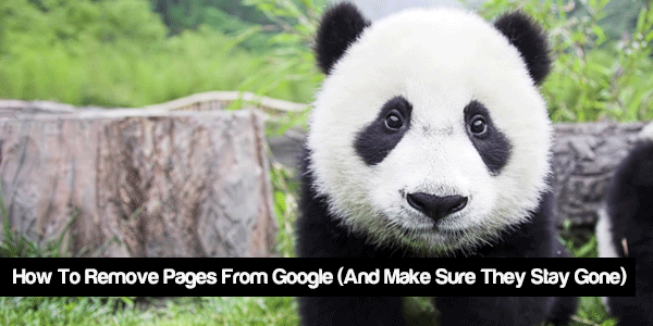 How to remove pages from google
