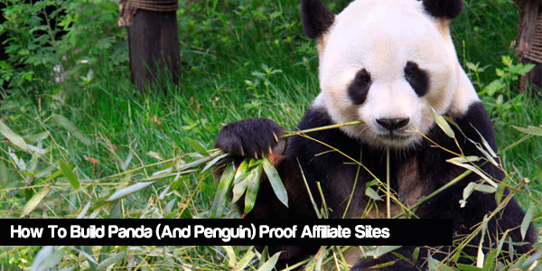 how to build panda proof affiliate sites